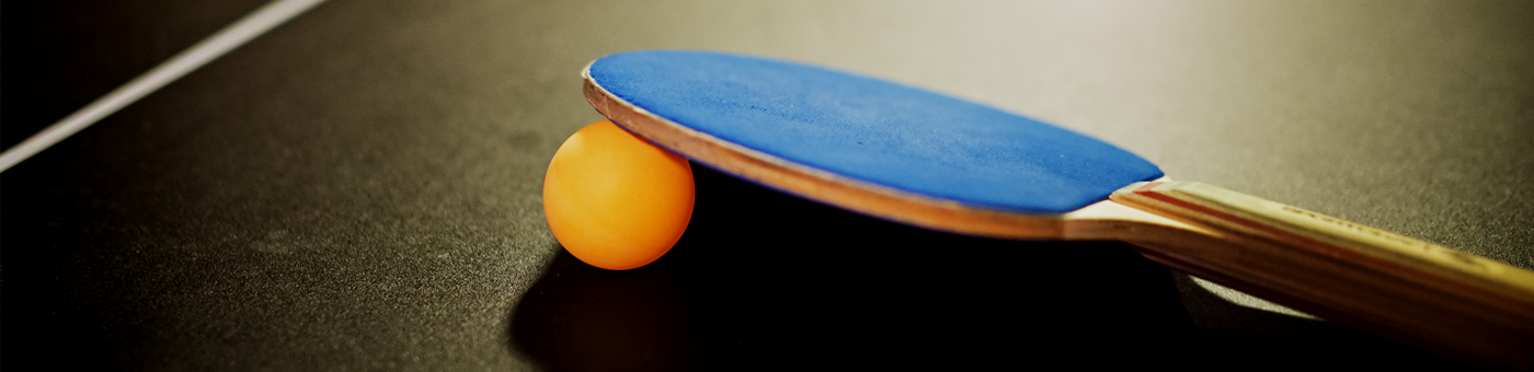 9ft Table Tennis